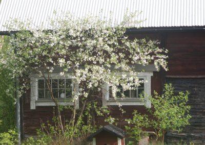 huset-sverige02