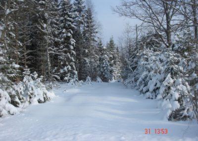 vinterstemning05