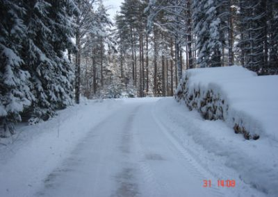 vinterstemning06