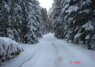 vinterstemning07